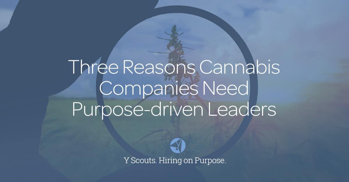 Blog_Three Reasons Cannabis Companies NeedsPDLeaders